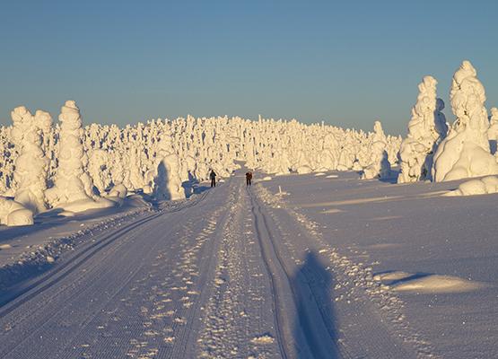 finlandia_07