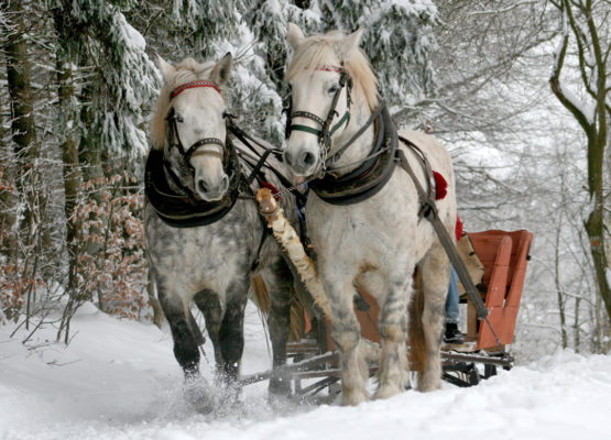 zimowisko-narciarsko-snowboardowe-w-tatrach-_03a